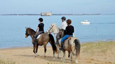 La Charente-Maritime vous promet de belles surprises